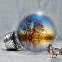 metode de economisire a energiei electrice